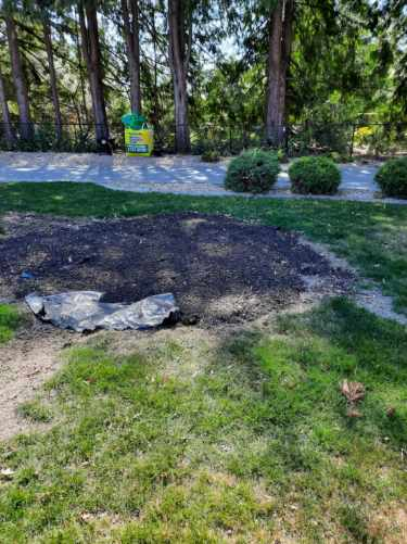 After stump grinding & removal